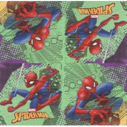 Spider-Man 33x33