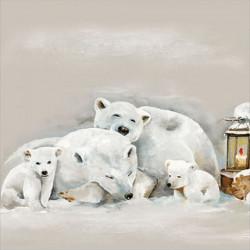 Lední medvědi 33x33