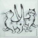 Kočičí madam 33x33