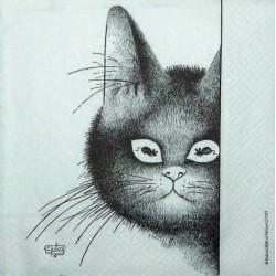 Kočičí kuk 33x33