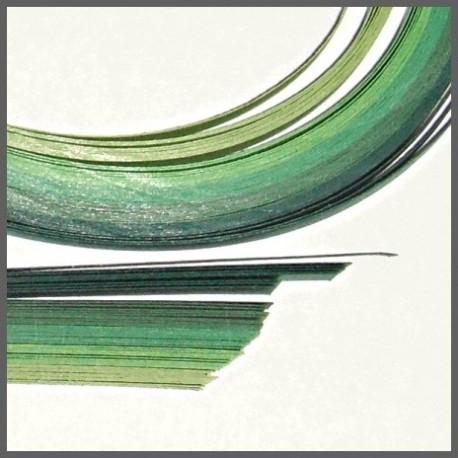 Set barevných proužků - zelený