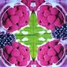 Sweet Raspberry 33x33