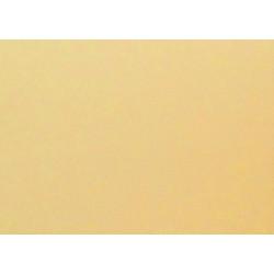 Barevný karton 160g - slonová kost