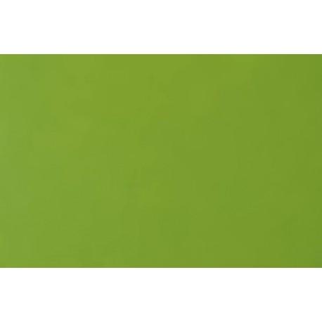 Fotokarton 300g A4 jarní zelená