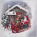 Zimní, vánoční
