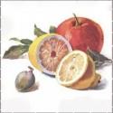 Ovoce, zelenina, potraviny