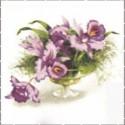 Orchideje, lilie, ibišky