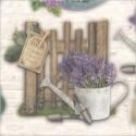 Léto a Provence