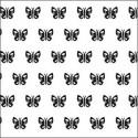 Motýlci, hmyz